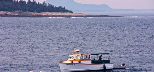 Great Duck Island House | View of a boat on the water from the shoreline