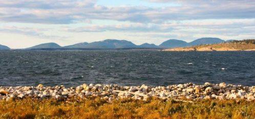 Great Duck Island House | Shoreline