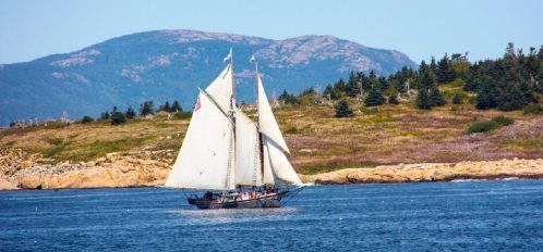 Great Duck Island House | Sailboat off the coast
