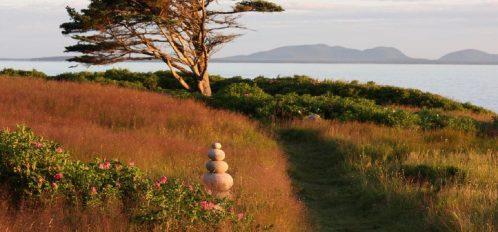 Great Duck Island House | Wilderness